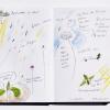Rainy Garden 2020 Nature Journal © Christiane Weismüller